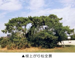 okuyama_3