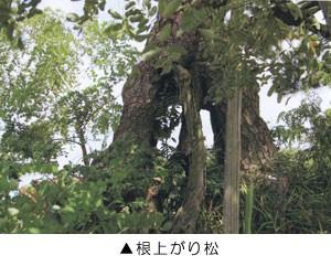 okuyama_4